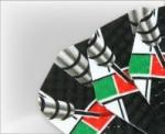 Aripioare darts