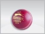 Mingi de cricket