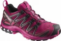 Adidasi alergare femei Salomon Xa Pro 3D Gore-Tex