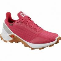 Pantofi Alergare   ALPHACROSS GTX  Femei