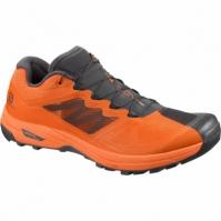 Pantofi Alergare   X ALPINE /PRO PHANTOM Barbati