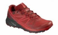 Pantofi Alergare Salomon Sense Ride Gore-Tex Invisible Fit Barbati