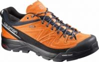 Pantofi de hiking barbati Salomon X Alp Leather Gore-Tex
