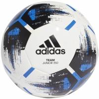 Minge fotbal adidas Team J350 CZ9573 teamwear adidas teamwear