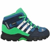 Adidasi sport Adidas Terrex Mid GTX I S76931