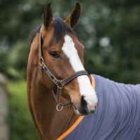 Amigo Horse Headcollar