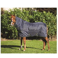 Amigo Pony Insulator Plus Medium 200g