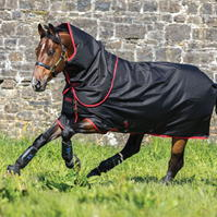 Amigo Super Hero 12 Plus Turnout Rug