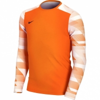 Bluza pentru portar Nike Dry Park IV JSY maneca lunga GK portocaliu CJ6072 819 pentru copii