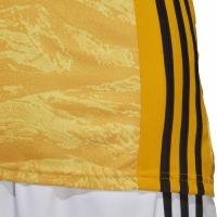Bluze portar fotbal Adidas Adipro 19 GK L galben DP3140 adidas teamwear