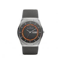 Ceas Skagen Denmark Watches Mod Skw6007