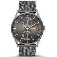 Ceas Skagen Denmark Watches Mod Skw6180