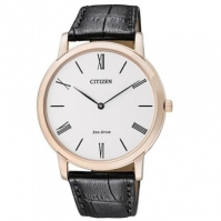 Citizen Watches Mod Ar1113-04b