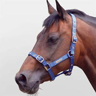 Cottage Craft Adjustable Headcollar