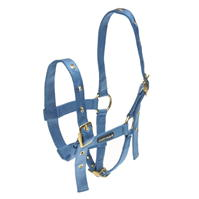 Cottage Craft Foal Headcollar
