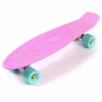 Placa skateboard METEOR plastic roz / bleu si 23717