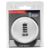 Anglia Cricket T20 antrenament Ball