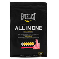 Everlast All in One 91