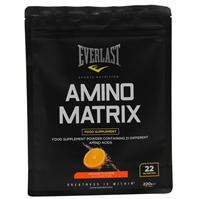 Everlast Amino Matrix 91