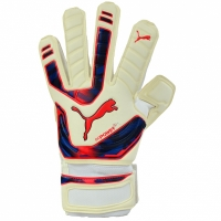 Manusa portar PUMA EVO POWER GRIP 2 RC 40998 15