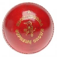 Kookaburra Sup Crown barbati