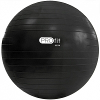 Minge fitness Profit 65 Cm cu A DK 2102 pompa