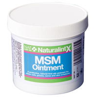 NAF NaturalintX MSM Ointment
