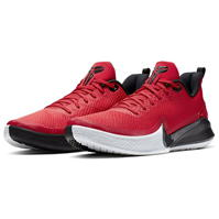 Adidasi pentru Baschet Nike Focus