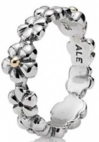 Pandora Jewelry Mod 190440-54