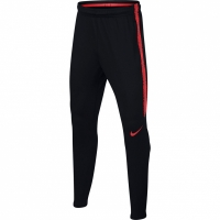 Pantaloni Nike B Dry Squad 18894877 016 pentru copii