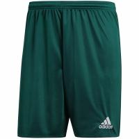 Pantaloni scurti adidas PARMA 16 c. verde DM1698 copii teamwear adidas teamwear