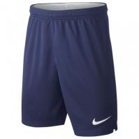 Pantaloni scurti Nike Tottenham Hotspur Acasa and Away 2019 2020 pentru copii