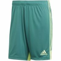Pantaloni scurti Sort adidas barbati Tastigo 19 verde DP3251 teamwear adidas teamwear
