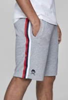 Pantaloni sport scurti C&S WL Taped deschis-gri Cayler and Sons mc