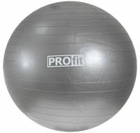 Minge fitness PROFIT 75cm silver
