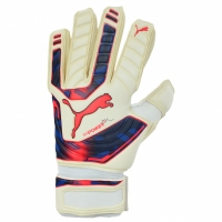 Manusa portar PUMA EVO POWER GRIP 2 IC 41162 15