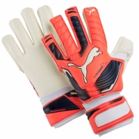 Manusa portar PUMA EVO POWER GRIP 2 IC 41162 30