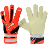 Manusa portar PUMA EVO POWER GRIP 2 RC 40998 30