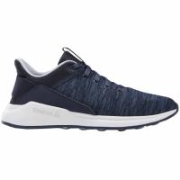 Reebok Ever Road DM X barbati Shoes bleumarin DV5827