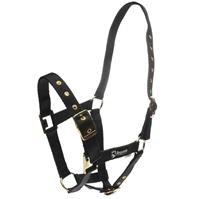 Requisite ajustabil Headcollar