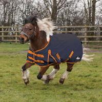 Requisite Cavalier Standard Medium Pony Turnout