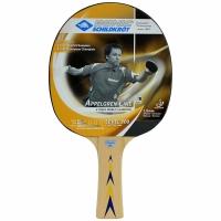 Paleta ping pong DONIC APPELGREN 300/703003