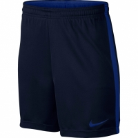 Pantaloni scurti Nike Dry Academy K 832901 459 pentru copii