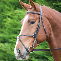 Aviemore Aviemore Mexican Bridle