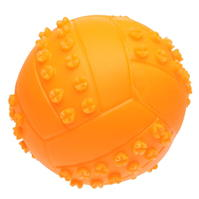 Smart Choice Ball Dogs Toy