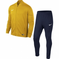 Treninguri Nike Academy 16 tricot galben-bleumarin 808757 739