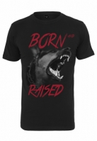 Tricou Born & Raised negru Mister Tee