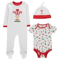 Mergi la Tricou Team Wales Rugby