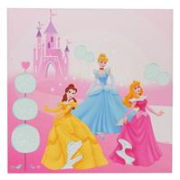 Princess Magnetic Board Picture cu personaje