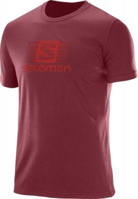 Tricouri sport barbati Salomon Blend Logo Ss Tee